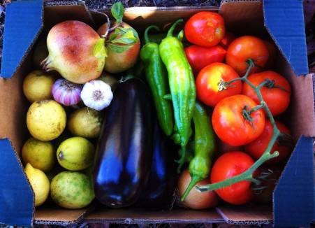 caja frutas ecologicas