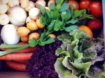 caja verduras 2