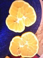 Limón Real